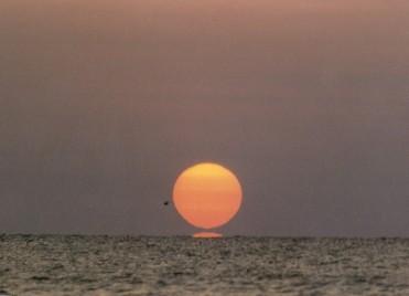 sun1b