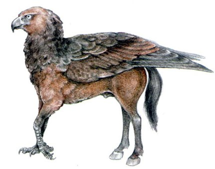 Ancient hippogriff by Schmidt