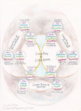gene keys codon ring of life & death 16.9.17
