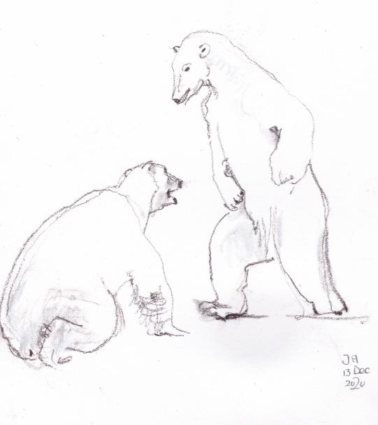 polarbears 2